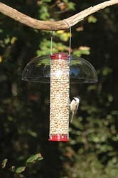 Mesh Peanut Feeder with Peanuts